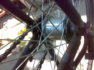 Freewheel persnel japan 36